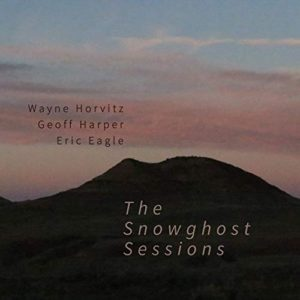 [Wayne Horvtiz - The Snowghost Sessions]
